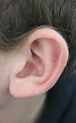 150px-Earrr